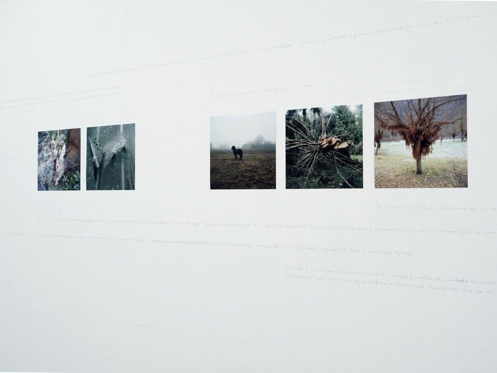 Text:Bild / Bild:Text III – Inspiration, Fotogalerie Wien, Vienne (AT)